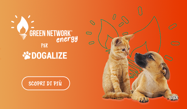 green network e dogalize